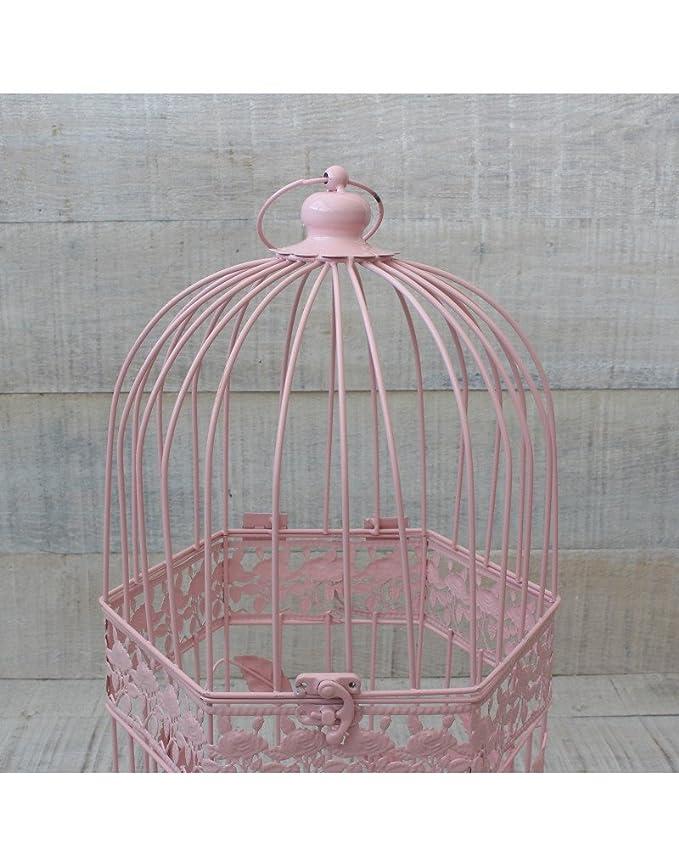 Hogar y Mas Jaula Decorativa Rosa de Metal para decoración ...