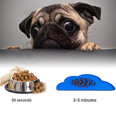 STXMALL Mascota Comida Lenta Bowl Perro Slow Feeder Bowl Slow Eating Dog Bowl Alimentador Interactivo Slow