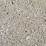 Safe & Non-Toxic (Various Size) 30 Pound Bag of Prewashed Sand Decor Made of Aragonite for Freshwater & Saltwater Aquarium w/ Light Tropical Sandy Beach Mixture Style [Off White & Tan]