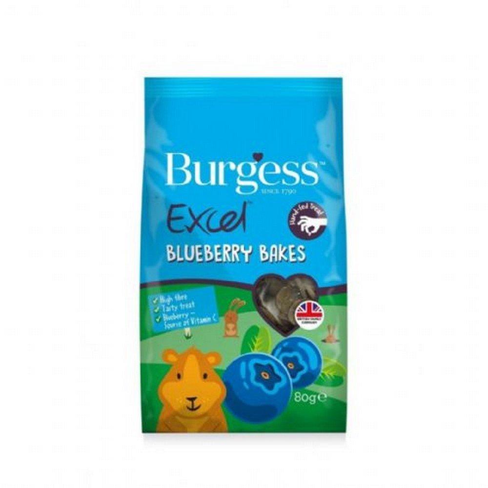 Burgess Excel Blueberry Bakes Treats UTBT2079_1