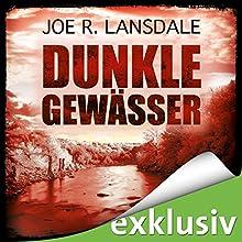 Dunkle Gewässer Hörbuch von Joe R. Lansdale Gesprochen von: Uve Teschner