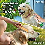 Vet's Best Flea and Tick Home Spray | Flea Treatment for Dogs and Home | Flea Killer with Certified Natural Oils 10