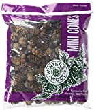 Woodware Craft Collection 44061 Spruce Pine Cones, 4-Ounce, Natural White