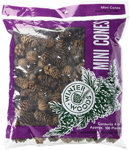 Woodware Craft Collection 44061 Spruce Pine Cones,