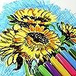 Pentel Color Pen Set of 24 Assorted (S360-24)