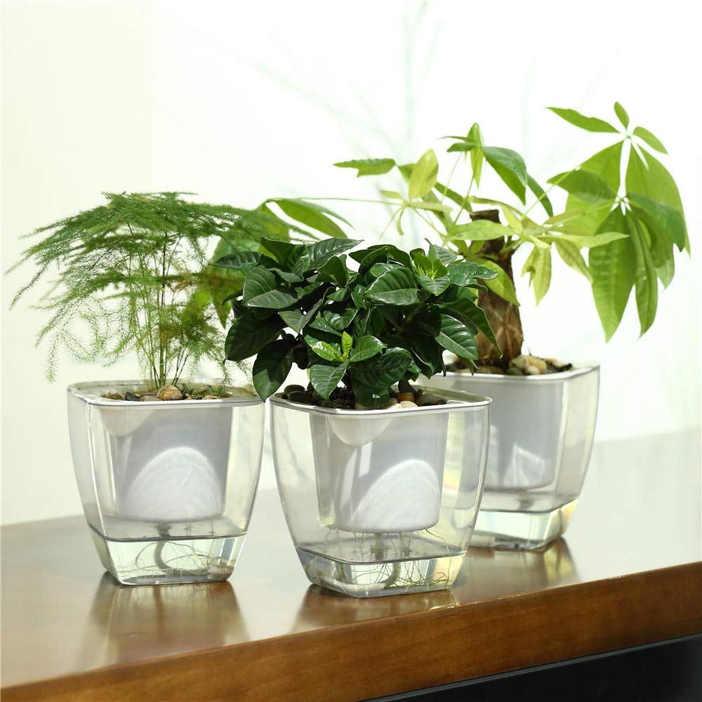 FENGZHITAO 3 Sets Self-Watering Planter, Clear Plastic Automatic-Watering Planter Flower Pot Square-Plant-Pot for All Plants, Succulents, Herb, African Violets, Flowers 3 Packs Medium