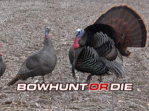 Snowstorm Turkey Hunting and Spring Bowhunting Action