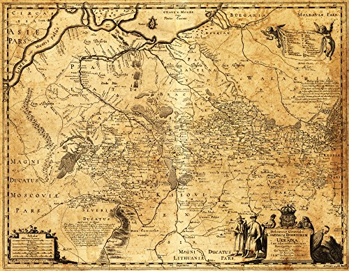 Ukraine - Panoramic Map (16x24 Giclee Gallery Print, Wall Decor Travel Poster)