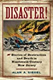 Disaster!, Alan A. Siegel, 081356459X