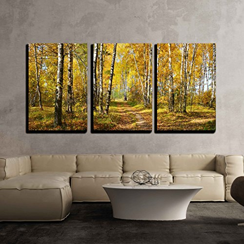 wall26 - 3 Piece Canvas Wall Art - birch grove in autumn forest - Modern Home Decor Stretched and Framed Ready to Hang - 16