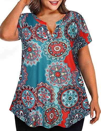 Diphi LiLi Women's Plus Size V Neck Short Sleeve Henley Shirt Swing Floral Tunic Tops
