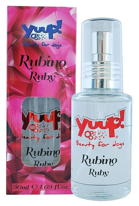 YUUP!. Perfume para Perros y Gatos ML: Amazon.es: Productos para ...