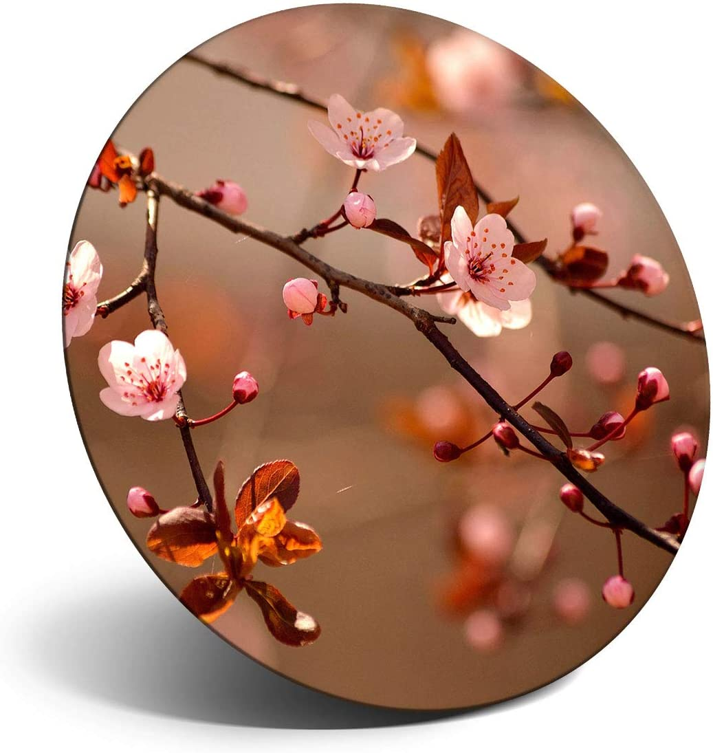 Awesome Magnet for Refrigerator, Fridge - Cherry Blossom Tree Sakura Japan for Office, Cabinet and Whiteboard, Magnetic Stickers, Cool Gift #14126