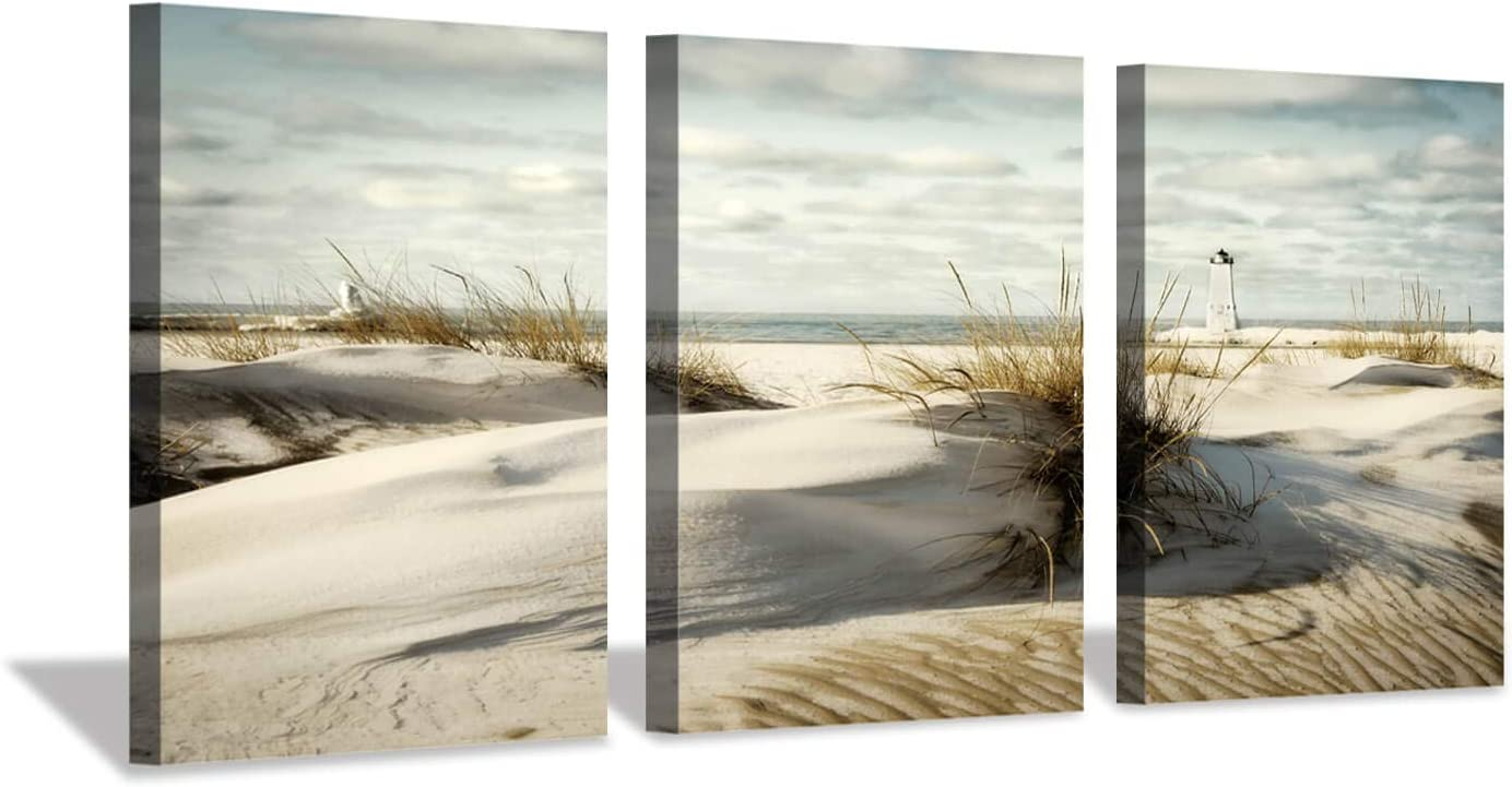"Beach Artwork Seascape Picture Prints: Grass Coastal Sand Dunes Graphic Wall Art on Canvas (16""x12""x3pcs)"