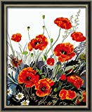 Diy oil painting, paint by number kit- Red Poppy 16*20 inch.