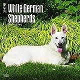 White German Shepherds Dogs Wall Calendar 2018 {jg} Best Holiday Gift Ideas - Great for mom, dad, sister, brother, grandparents, , grandchildren, grandma, gay, lgbtq.