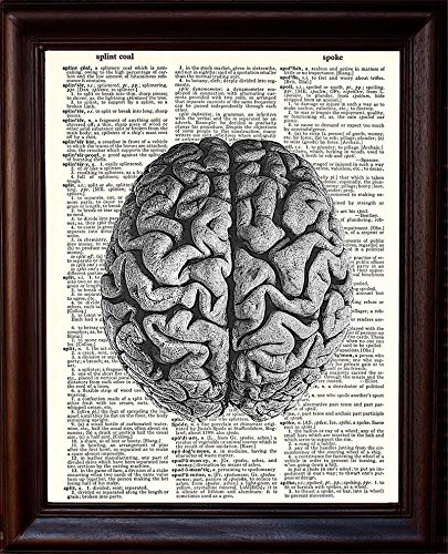 Anatomical Human Brain - Printed on Upcycled Vintage Dictionary Paper Anatomy Art Poster /