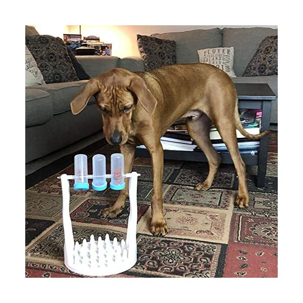 Pet Dog Interactive Puzzle Toys for IQ Training and Entertainment by Spinning Bottle, Funny Slow Food Feeder to Prevent Obesity (12.20 X 8.66 X 6.69 in) 2