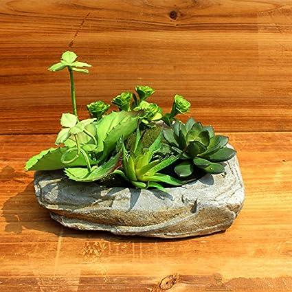 Mini Giardino Di Piante Grasse Finte Da0006 Amazon It Giardino E