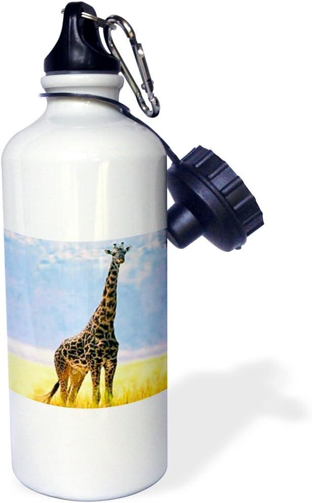 3dRose White Tiger Sports Water Bottle, 21 oz, White