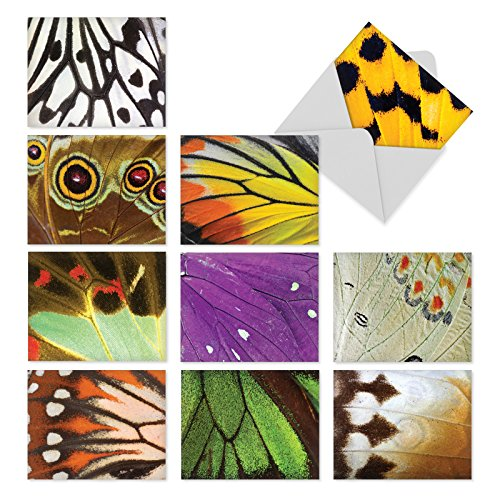 M3108 Wing It: 10 Assorted Blank All-Occasion Note Cards Featuring Close-Up Photos of Colorful Butterfly Wings, w/White Envelopes.