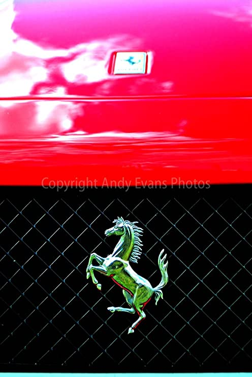 Ferrari Prancing Horse Emblem Car Photo Automotive Wall Art Canvas Print