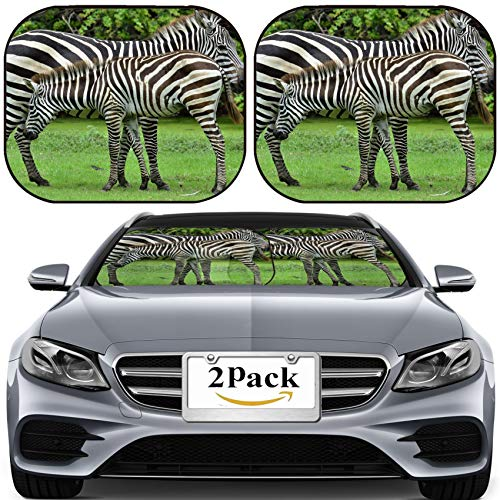MSD Car Sun Shade for Windshield Universal Fit 2 Pack Sunshade, Block Sun Glare, UV and Heat, Protect Car Interior, Image ID: 26688919 Zeabra Mother and Foal in The Nice Moment (Best Rainbow Dash Moments)