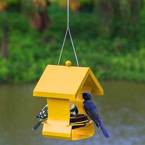 Al Aire Libre Pájaro Alimentador Atrae Pájaros Salvaje Pájaro Alimentador Para Jardín Decoración Y Amantes De Las Aves Y Niños Observación De Aves. Cacoffay,Yellow: Amazon.es: Deportes y aire libre