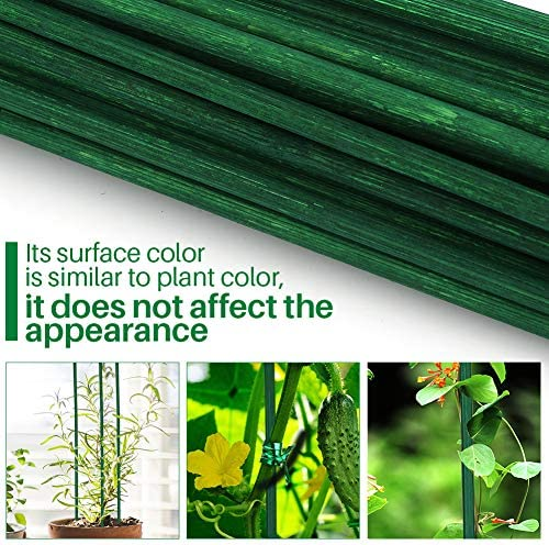Jane Choi Tutores para Planta, Tutores de Bambú, Varillas de bambú ...