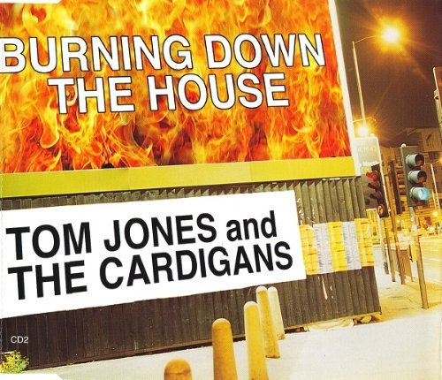 Burning Down The House - Tom Jones And The Cardigans CDS (Tom Jones The Cardigans Burning Down The House)