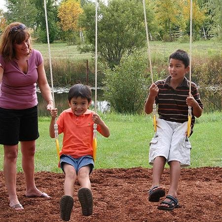 Premium Play Sets Ainsley Ready to Assemble Wooden Swing Set, Multicolor by Cedar Summit (Image #3)