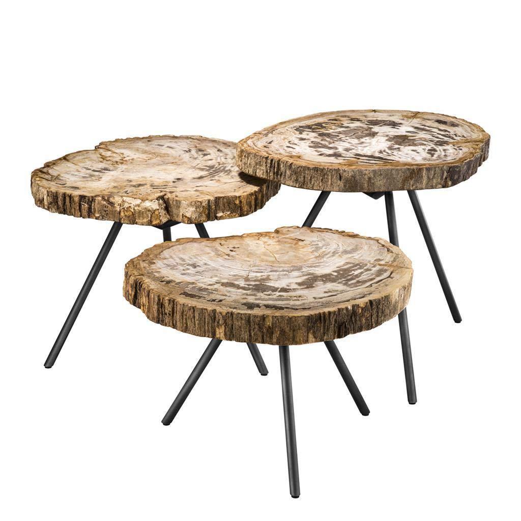 Wood Slice Coffee Table.Amazon Com Petrified Wood Coffee Table Set Of 3 Eichholtz De Soto
