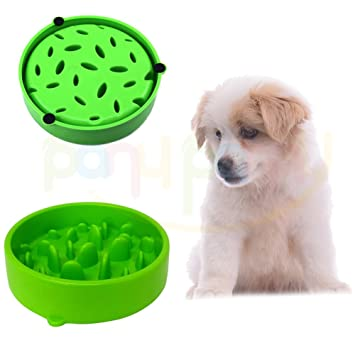 dog feeder grande bowl culture pet green products the slow