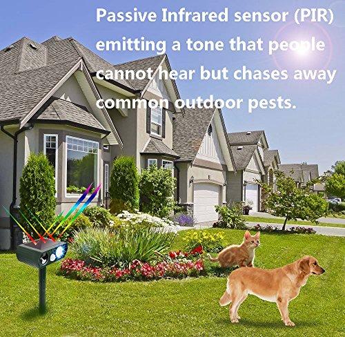 Pest Repeller Outdoor Solar Powered And Weatherproof
