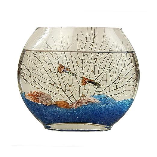 Creativa boca plana pecera de vidrio jarrón ovalado, ultra blanco ...
