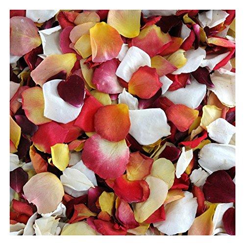 Rose Petals 30 cups. Sunset Blend of Rose Petals from Flyboy Naturals. Wedding Decoration. Set Rose Petals