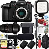 Panasonic LUMIX GH5S 10.2MP C4K Mirrorless ILC Camera Body with Wi-Fi & Bluetooth - Rokinon 14mm f/2.8 Lens 64GB Dual Battery & Shotgun Mic Pro Video Bundle