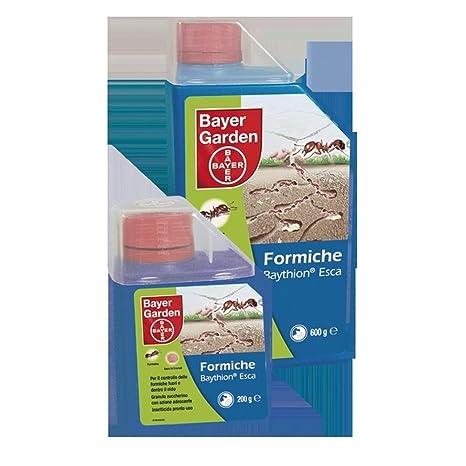 Bayer 435826 Baythion Esca Per Formiche Amazonit Giardino E