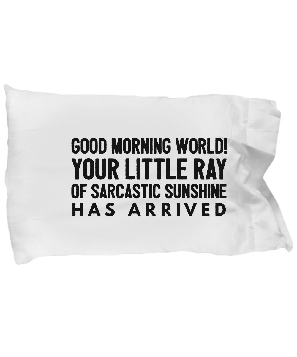 BarborasBoutique Gag Gifts For Teenagers - Ray Of Sunshine Pillowcase - Funny Sarcastic Pillow Case Teenage Boys - I Am Fluent In Sarcasm