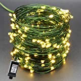 YULETIME Fairy String Lights with Adapter, 50Ft 150 LEDs Waterproof Starry Copper Wire Lights, Home Decor Firefly Lights for Garden Backyard Christmas Tree, Green Wire, Warm White