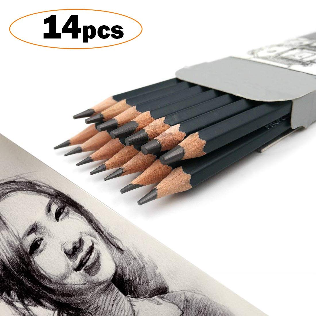Graphite pencils setprofessional sketch and art pencils best quality 14 pcs set 12b 10b 8b 7b 6b 5b 4b 3b 2b b hb 2h 4h 6h for drawingperfect for