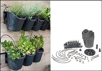 DIGu0027s Living Wall Modular Vertical Garden Planting Kit   Drip Irrigation  INCLUDED!