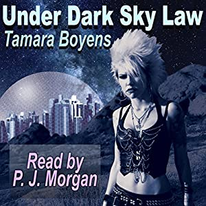 Under Dark Sky Law Audiobook