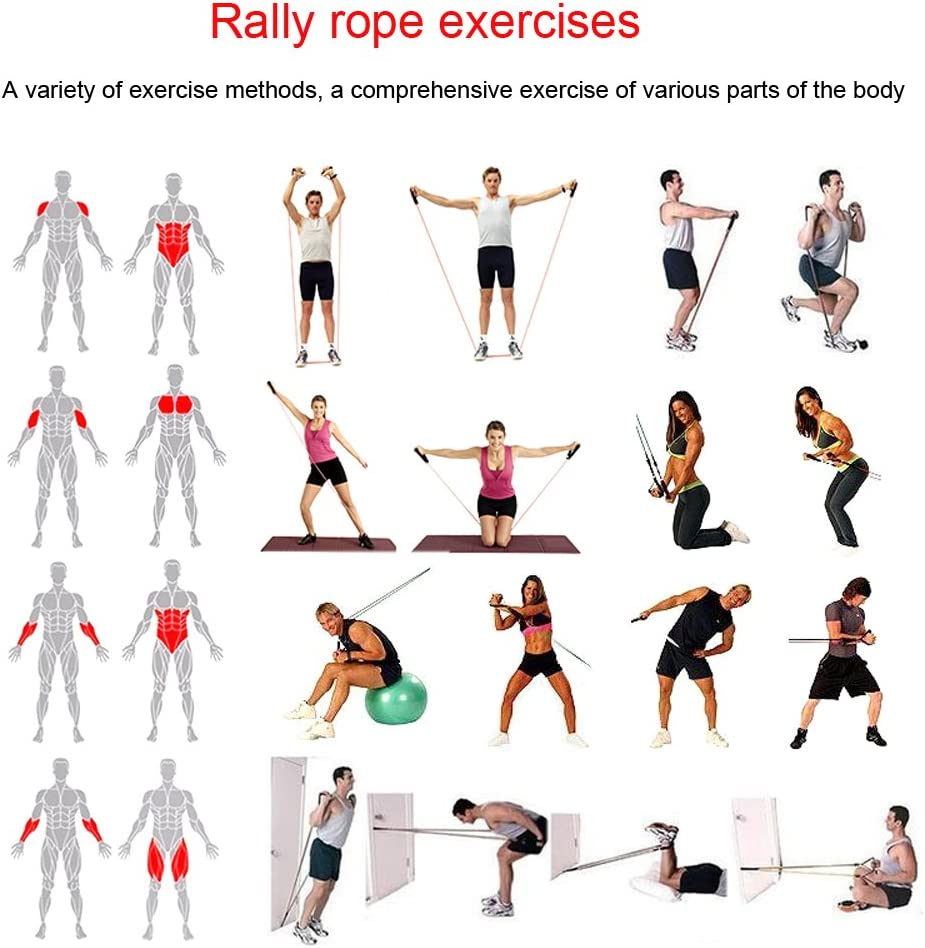 Resistance Bands Correas Set Workout Bands 12 pcs - 5 Fitness Bandas Elasticas en Látex,1 Yoga Exercise Band 8 forma,Anclaje de Puertas,Correas Para ...