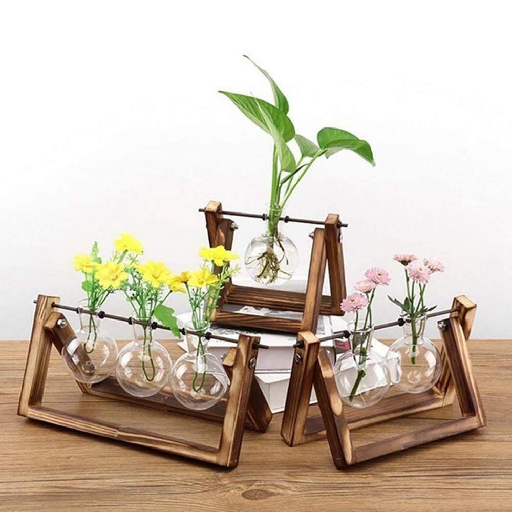 SUNREEK - Jarrón de Cristal para macetas de Escritorio, 3 jarrones de Bombilla de Cristal, Soporte de Madera Maciza para Plantas hidropónicas, jardín, ...