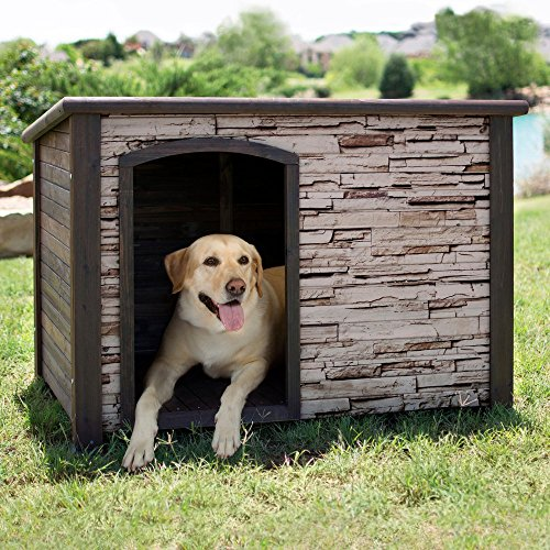 Precision Pet House, Large/70-90 Number For Sale