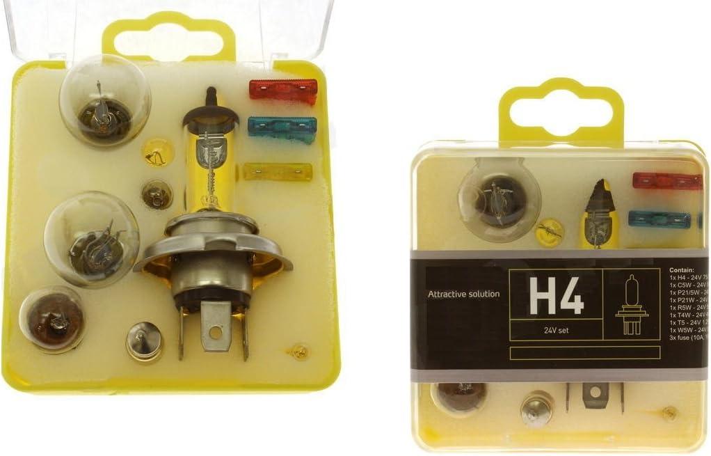 Lkw Ersatzlampen Box Koffer 24v Lampen Und Sicherungen Set Ersatzbirnen Ersatzlampenkasten H4 C5w P21 5w P21w R5w T4w T5 W5w Auto