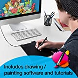 Wacom Intuos CTH690AB Art Pen and Touch Digital Graphics Drawing and Painting Medium Tablet