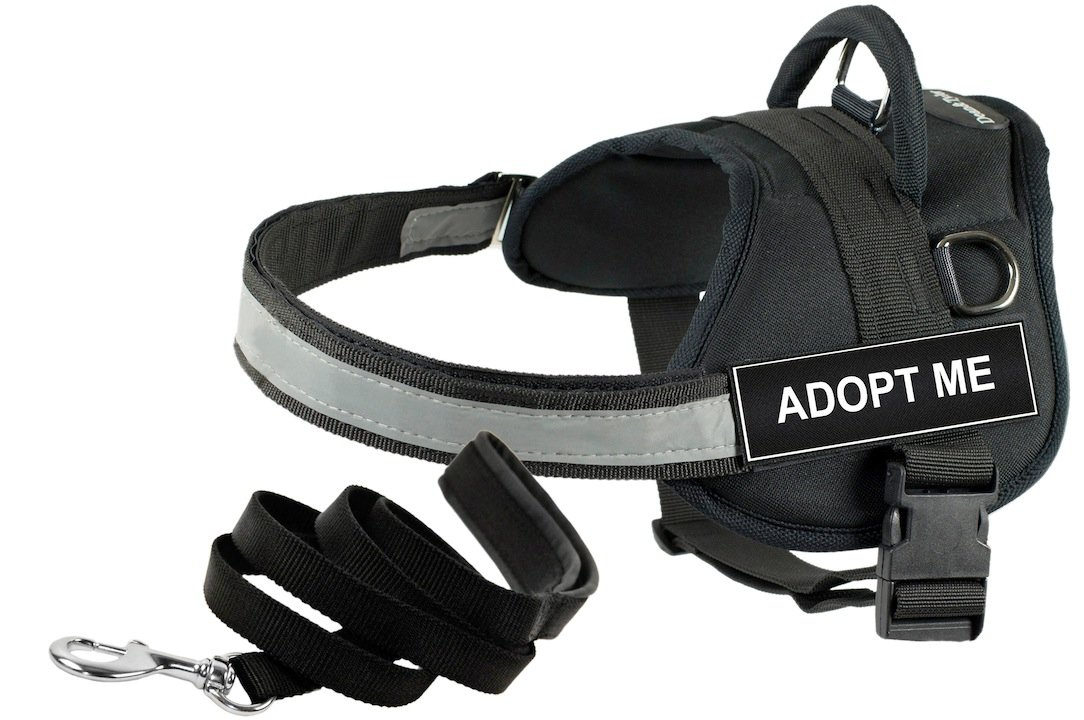 Dean and Tyler Bundle One DT Works Harness, Adopt Me, XX-Small (18, 21) + One Padded Puppy Leash, 6-Feet Stainless Steel Snap, Black