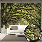 Wall Mural Nature Mural Summer Forest Mystic Oak Oaks Avenue Quercus Fairy Tale Forest Park Branches I paperhanging Wallpaper poster wall decor by GREAT ART (132.3 x 93.7 Inch/336 x 238 cm)